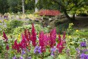 Batsford Arboretum - summer (2)