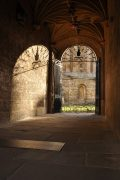 Bodleian Library-031