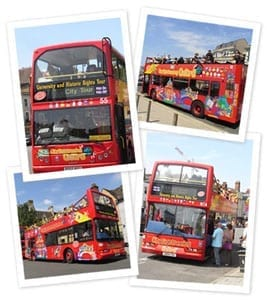 city-sightseeing-buses