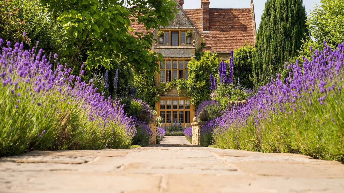 Forum on this topic: Summer Cooking at Le Manoir aux Quat'Saisons, summer-cooking-at-le-manoir-aux-quatsaisons/
