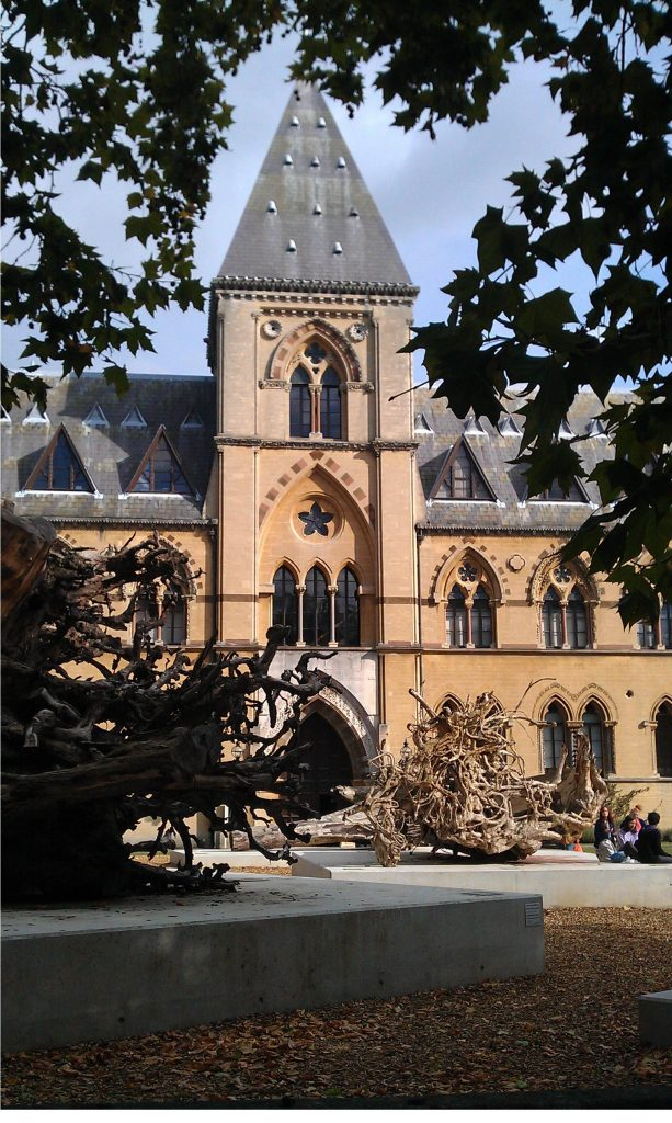 Oxford University Museum Of Natural History Tickets