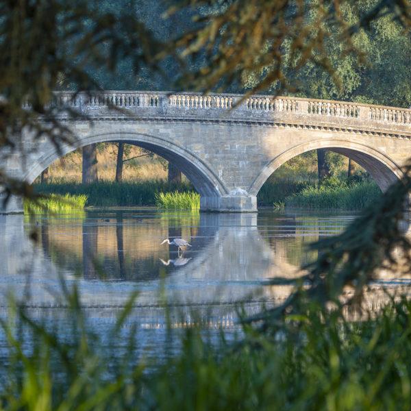 blenheim-palace-bridge