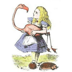 Alice & Flamingo