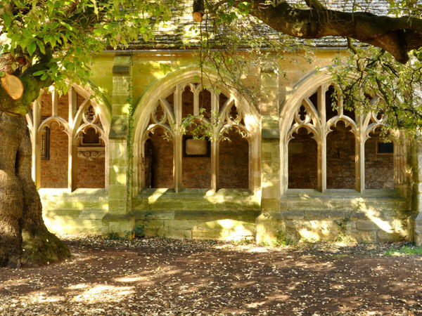 new-college-tree-cloisters