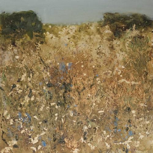 sarah-wiseman-gallery