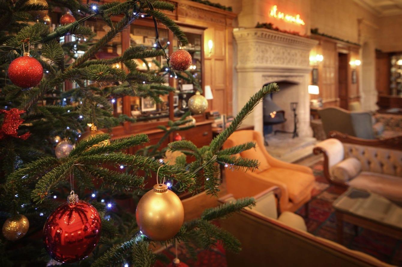 christmas-tree-eynsham