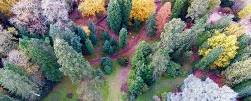 harcourt-arboretum