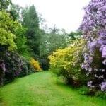 harcourt-arboretum-6