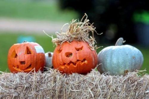 halloween-cogges-manor-farm
