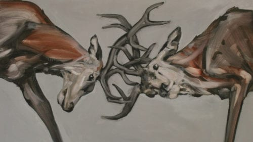 Abigail-Reed Stags rutting, oil on canvas